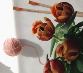 knitting needles straight tulip color - knit affair